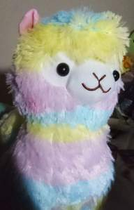 Rainbow-Alpacasso