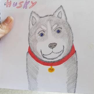 Husky-by-Tasha